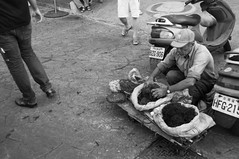 Man Selling Seaweed (dalenolanjr) Tags: sea blackandwhite bw fish blackwhite weed market culture taiwan taichung sell taiwanese