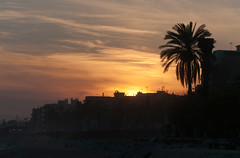 Premi de Mar (Gatodidi) Tags: barcelona sunset color sol landscape atardecer mar nikon mediterraneo arboles paisaje palmeras cielo nubes catalunya crepusculo puesta maresme litoral sombras siluetas catalua d90 premi