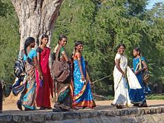 Groupe de visiteuses du temple dAiravateshwara (Darasuram, Inde) (dalbera) Tags: india temple unesco tamilnadu inde darasuram patrimoinemondial indiennes dalbera