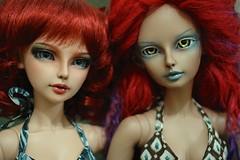 ADAD 2014/136 - Two big Tan girls (TeaPartyRevolution) Tags: sd bjd luts delf fairyland limitededition balljointeddoll etain lishe tanskin tanningskin belisama feeple feeple60