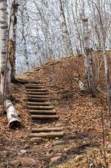 20140507-DSC02683-2 (diogenic) Tags: minnesota spring hiking mn duluth superiorhikingtrail sht minoltamd minoltamd3570f35 minoltamd357035