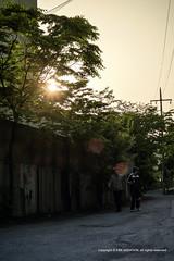 Wondang_20140509 at 18-21-30_Edit.jpg (Kim Jaehoon) Tags: sunset nature silhouette photography korea crosscountry southkorea gimpo gyeonggido gimposi photographersontumblr originalphotographers