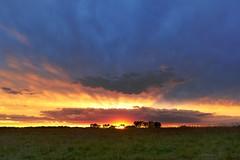 Flat Cloud Sunset (thefisch1) Tags: sunset cloud color intense nikon colorful flat kansas plains greatplains