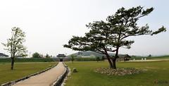 Korea_Haemieup_Wall_10 (KOREA.NET - Official page of the Republic of Korea) Tags: wall korea  fortresswall hanok chungcheongnamdo     koreafortress   seosansi koreasgate  haemieupwall