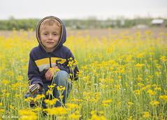 """""""Yellow!"""" (D A Baker) Tags: flowers boy portrait dan yellow barn hoodie baker farm daniel meadow indiana son farmland da danielbaker danielabaker"""