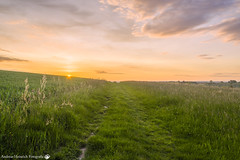 As the Sun goes down. (andreasheinrich) Tags: sunset summer germany deutschland warm sonnenuntergang sommer meadows fields hdr 32bit southgermany
