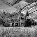 Elegant Mansion in Declining Years