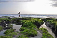 Tanah lot (MagiCshoot) Tags: sea bali mer man landscape fishing fisherman indonesie tanahlot d90