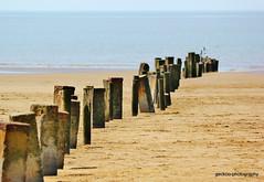 IMG_1238 (Geckoo76) Tags: sea beach pier sand pillars burnhamonsea berrow berrowbeach