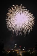 IMG_2241R (.RGB.) Tags: philadelphia fireworks artmuseum independenceday fairmountpark lemonhill