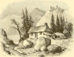 Anglų lietuvių žodynas. Žodis stone bramble reiškia akmens raukšlėtųjų gervuogių lietuviškai.