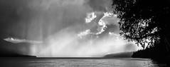 Lake Fever (evanffitzer) Tags: blackandwhite bw lake storm water photography photographer britishcolumbia tragicallyhip horseflylake canoneos60d evanffitzer evanfitzer