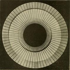 Anglų lietuvių žodynas. Žodis worsted yarn reiškia šukuotinių verpalų lietuviškai.