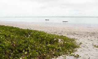 Praia Ponta do Mangue | Alagoas, Brazil.