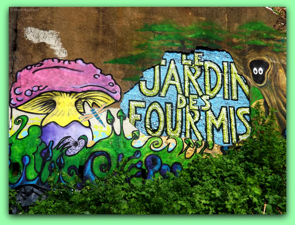 The World S Best Photos Of Champignon And Graffiti Flickr Hive Mind