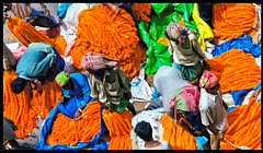 patchwork (travelben) Tags: flower market kolkata india inde asie asia fleur calcuta street northern west bengal calcutta colors couleurs travel flowers marygold patchwork hooghly river ganga howrah bridge indian abstract color orange garland colori mosaico seller salesman puzzle