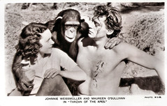 Johnny Weismuller and Maureen O'Sullivan in Tarzan the Ape Man (1932) (Truus, Bob & Jan too!) Tags: johnnyweissmuller johnny johnnie weissmuller weissmüller weismuller maureenosullivan maureen osullivan german american actor european filmstar hollywood moviestar film cinema cine kino picture screen movie movies filmster star vintage postcard carte postale cartolina tarjet postal postkarte postkaart briefkarte briefkaart ansichtskarte ansichtkaart metrogoldwynmayer mgm tarzan johnnyweismuller tarzantheapeman 1932 picturegoer