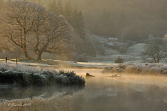 River Of Gold (jeanette_lea) Tags: sunrise dawn river brathay elterwater the lake district cumbria frost light water trees log reflections colours grass