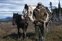 1953-- Keith C. Smith (dad) Hunting Moose, British Columbia, Fall 1953 (Blue-yonder) Tags: moosehunting moose caribou wildlife horse packhorse mountain mountainman keithcsmith