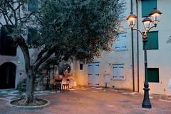"""Grado GO  It - """"Campo del Patriarca Elia"""" (Fabrizio Lucchese 1') Tags: italia fvg notturno canon760d fabriziolucchese albero grado italien italy friuliveneziagiulia"""