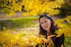 Mt-Lofty-黄叶-Jo--f (James Yu Photography) Tags: easter jamesphotography jameszhenyu mountloftybotanicgarden adelaide 小面包 澳洲 阿德莱德 面包娘