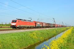 DBC 189 067, Valburg (Sander Brands) Tags: br betuweroute siemens züg güterzug trein train treni treno trenuri