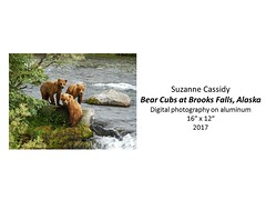 "Bear Cubs at Brooks Falls, Alaska • <a style=""font-size:0.8em;"" href=""https://www.flickr.com/photos/124378531@N04/33372639990/"" target=""_blank"">View on Flickr</a>"
