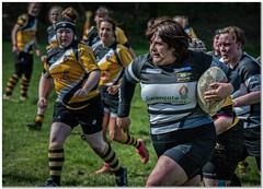 Full of energy (Hugh Stanton) Tags: rugby ladies appicoftheweek