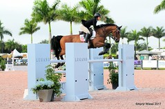Kristen Berian, my granddaughter (Apryl Wiese) Tags: wef7 horse equine showjumper