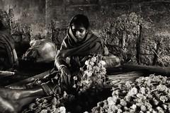 Flower market, Kolkata (paola ambrosecchia) Tags: bnw portrait light india flowers beautiful woman dark street kolkata blackandwhite monochrome biancoenero ritratto face viso tunnel