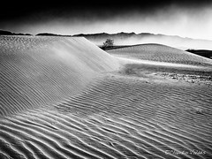 Sandstorm (claudiov958) Tags: biancoenero blackwhite blancoynegro california černýabílý claudiovaldés czarnyibiały deathvalley desert dunes landscape mediumformat mediumformatdigital mesquitesanddunes ngc noiretblanc pentax645z pretoebranco sanddunes schwarzundweiss черноеибелое smcpentaxdfa64555mmf28alifsdmaw pentaxart