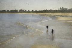 Sunday stroll slide (cheezepleaze) Tags: beach australia sand sea walking strolling sandbetweenyourtoes texture painting hss healthynegativeions