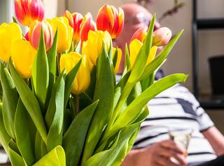 Spring feelings - enjoying life on the balcony (explore 2017-04-16)