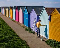 Beach Hut Blue (Rupert Brun) Tags: heren bay april beach coast kent sea seaside sunshine walk beachhut hut paint painting woman step ladder path sunny