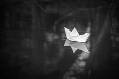 Dive Deep 91/365 (Watermarq Design) Tags: float boat pond water 365project blackandwhite lyrics deep