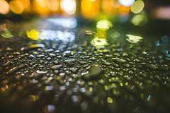 Raindrops #111/365