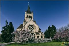 _SG_2017_03_7019_IMG_5463 (_SG_) Tags: basel basle schweiz suisse switzerland frühling spring grün green frühlingsbote blumen flowers church kirche pauluskirche pauluskirchepaulus pauluschurch