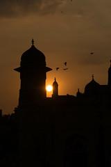 Sunset Ravens (haqiqimeraat) Tags: lalbagh dhaka sunset nikon bangladesh beautiful scenery landscape fort