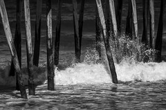 """Sea Fever"" (Photography by Sharon Farrell) Tags: poetry poem poetrybysharonfarrell whalebone whalebonejunction outerbanks outerbanksnorthcarolina outerbanksnc obx obxnc nagshead nagsheadnorthcarolina nagsheadnc outerbanksfishingpier"