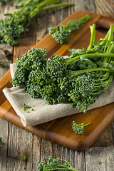 Raw Green Organic Broccolini (brent.hofacker) Tags: agriculture antioxidant asian baby background branch brassica broccoli broccolini brocolli brocollini chinese closeup colorful diet eating florets food fresh freshness gourmet green health healthy ingredient kitchen leafy meal natural nature nobody nutrition nutritious object organic produce raw ripe sprouts stem sweet vegan vegetable vegetarian vegie vitamin wholesome