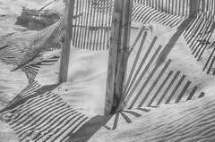 """For Sylvia Plath"" (Photography by Sharon Farrell) Tags: shadow shadows shadowsandlight light lightandshadows sylviaplath thebelljar poet nagshead nagsheadnorthcarolina nagsheadnc northcarolina outerbanks outerbanksnorthcarolina outerbanksnc fences dunefences blackandwhite noiretblanc beach sand monochrome autoremovedfrom1000faves"