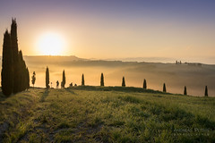DSC00597_s (AndiP66) Tags: capellavitaleta capella vitaleta sanquiricodorcia sanquirico sonnenaufgang sunrise nebel dunst fog mist sonne sun morgen morning april spring frühling 2017 siena pienza valledorcia valle dorcia toscana tuscany italien italy sony sonyalpha 7markii 7ii 7m2 a7ii alpha ilce7m2 sigma sigma24105mmf4dghsmart sigma24105mm 24105mm art amount laea3 andreaspeters