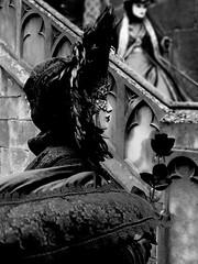 De Venise à Saverne 2017  26/40 (Izzy's Curiosity Cabinet in Venice Mood) Tags: venise venezia venice venedig fééries vénitiennes à la cour de saverne costumes masques costumés costumed défilé 2017