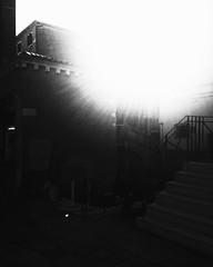 """Blinded By The Sun"" (giannipaoloziliani) Tags: urbanstreet angolo angle urban streetcaptures capture street streetphoto streetphotography city città italy italia venice venezia scala scale muri walls iphone iphonephoto flickr shapes sagome bridge ponte light luce luci ombre architecture architettura shadows sun noire backlight blindinglight abbaglio controluce sole monochrome monocromatico black nero biancoenero blackandwhite"
