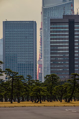 Tokyo - Imperial Palace Garden - 02 (coopertje) Tags: japan tokyo tokio imperialpalace architecture park