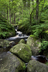 Wyming brook (Keartona) Tags: wyming brook sheffield england landscape nature reserve rocks green greenery forest woods waterfall water rocky
