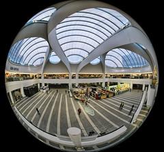 Grand Central (Hugh Stanton) Tags: station roof windows appicoftheweek