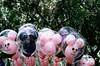 Edited Balloons (Ye-Jin) Tags: disneyland disney balloons 35mm