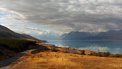 Lake Pukaki and Mt Cook (Bernard Spragg) Tags: landscapes scenic newzealand lumixfz1000 bridgecamera lakes photofans