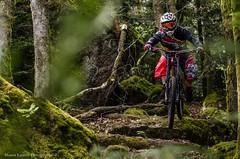 VTT dans la mousse (Manonlemagnion) Tags: ride vtt dh mousse nature sport lapierre sousbois nikond7000 sb700 50mm14